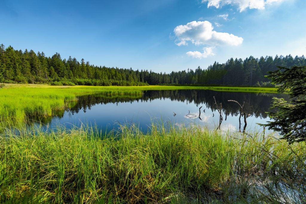 Črno jezero, Pohorje, Slovinsko