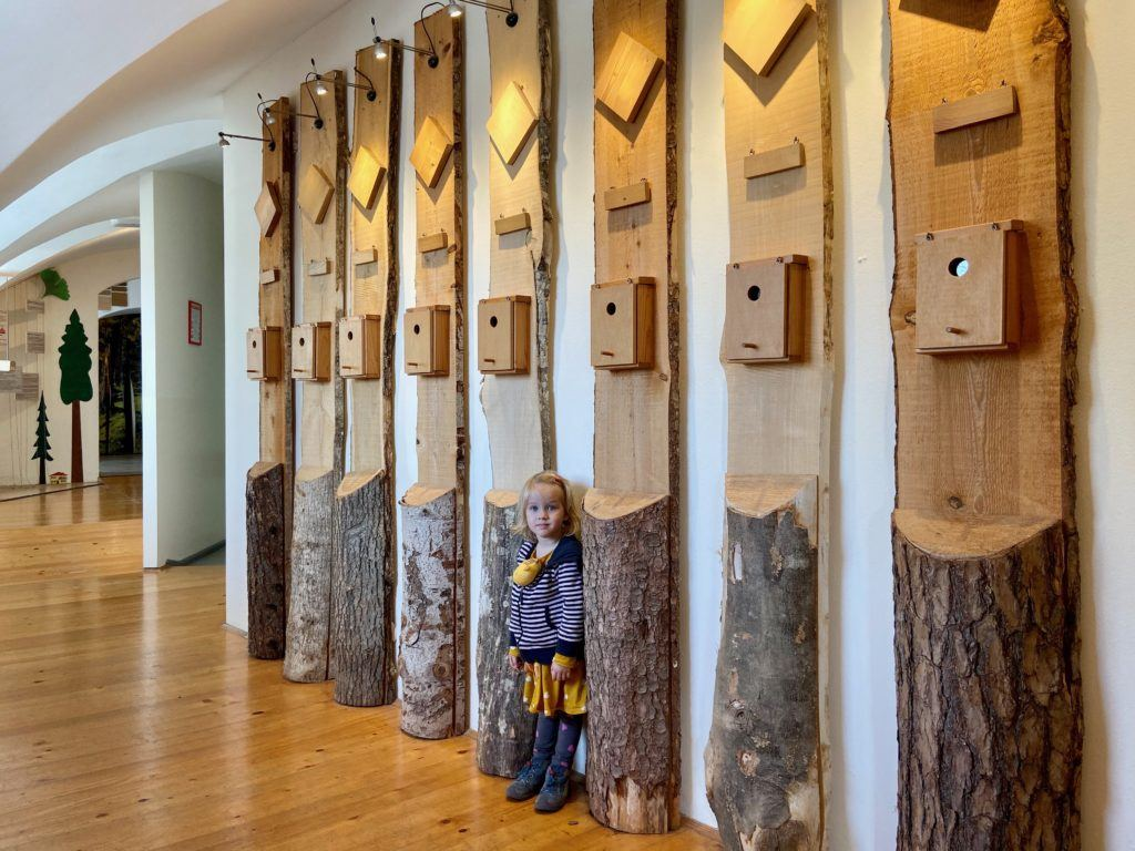 Lesnické muzeum Nazarje, Savinjská dolina, Slovinsko