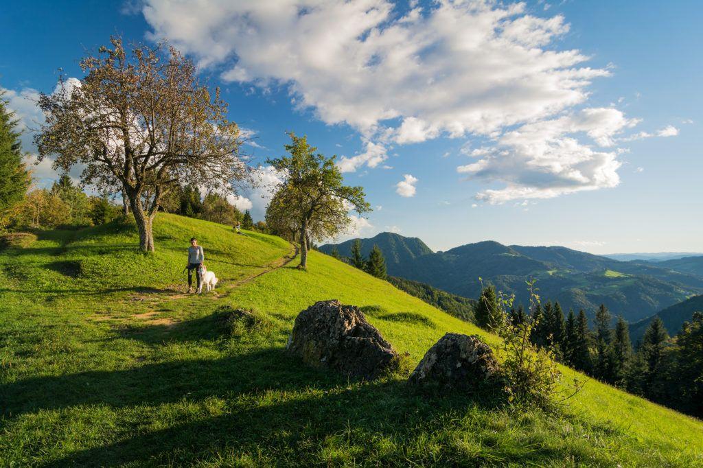 Planica, Škofjeloško hribovje, Slovinsko, Foto: Sašo Kočevar