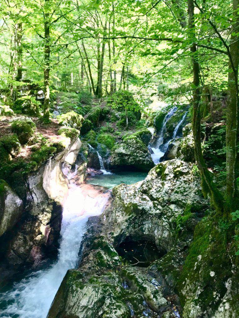 Šunikov vodni gaj, údolí Soči, Slovinsko