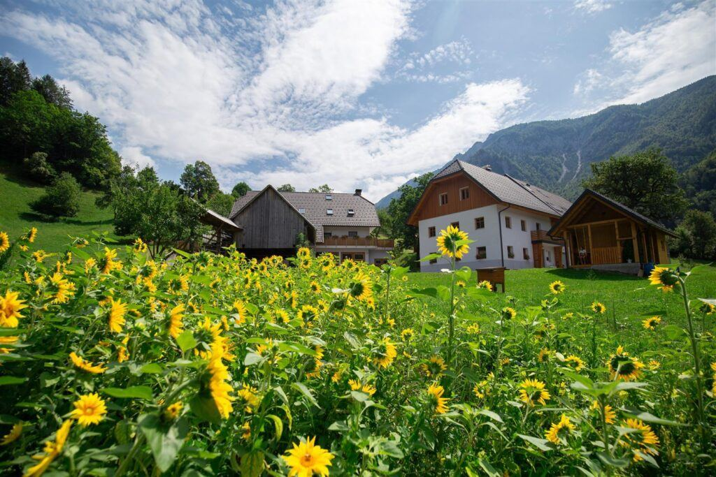Apartmány Turistická farma Štorman, Slovinsko